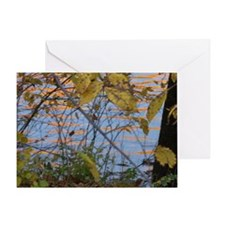 Schuylkill River (2) by NanC. Greeting Card