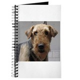 Cute Airedale Journal
