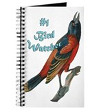 bird watching oriole Journal