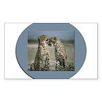 Cheetas 2 Rectangle Sticker 10 pk)