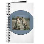 Cheetas 2 Journal