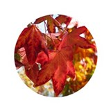 "Autumn Leaves 3.5"" Button"