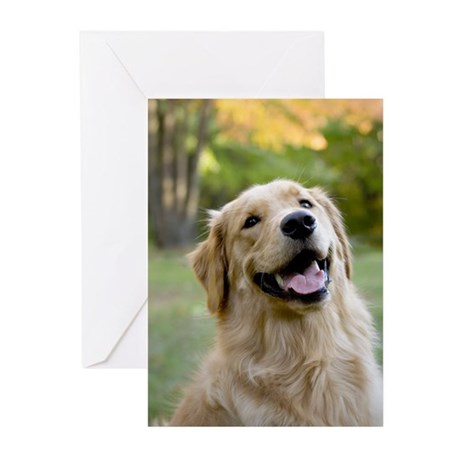 Good Boy Golden Greeting Cards (Pk of 10)