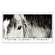 Horse Eye Art Rectangle Stickers