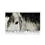Horse Eye Art Rectangle Magnet (100 pack)
