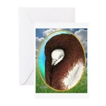 Opal Jacobin Pigeon Greeting Cards (Pk of 10)