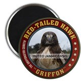 Griffon the Red-Tailed Hawk Magnet