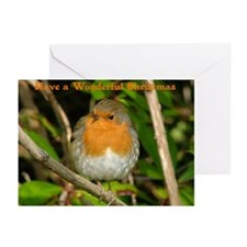Robin Christmas Greeting Cards (6 in pack)