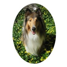 Collie in Spring Oval Ornament