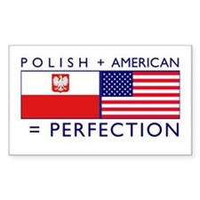 Polish American flags Rectangle Sticker 10 pk)
