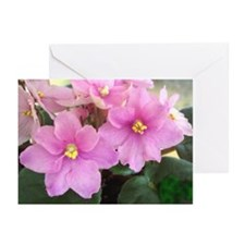 Beautiful Pink AV Greeting Cards (Pk of 10)