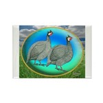 Guineas On Opal Rectangle Magnet