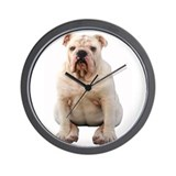 Bulldog 4 Wall Clock