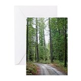 Through the Redwood Forest Greeting Cards