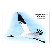 Whooping Crane Postcards (Package of 8)