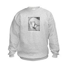 White Buffalo & Calf ~ Sweatshirt~2 Sides