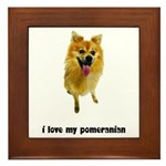 Pomeranian Lover Framed Tile