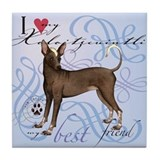 Xoloitzcuintli Tile Coaster