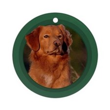 Toller Green Round Ornament