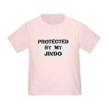 Protected by Jindo T