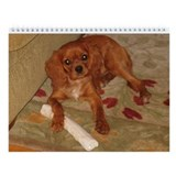 Ruby Cavalier King Charles Calendar