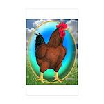 Broiler Opal Chicken Rectangle Sticker 50 pk)
