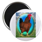 Broiler Opal Chicken Magnet
