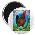 "Broiler Opal Chicken 2.25"" Magnet (100 pack)"