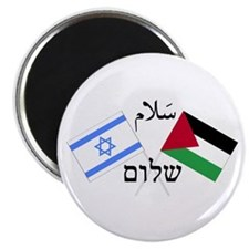 Israel and Palestine Peace Magnet