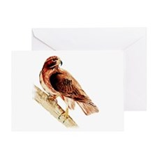Unique Redtail hawk Greeting Card