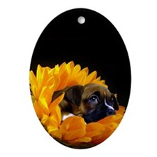 Boxer Dog in Sunflower Oval Ornament