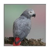 Congo African Grey Tile Coaster