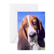 """Sad Bassethound - B3"" Greeting Cards (Package of"