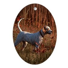 """""""Pointing Pointer B1"""" Oval Ornament"""