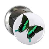 "Green Peacock Butterfly 2.25"" Button"