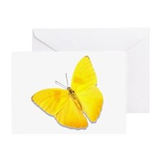 Cloudless Sulfur Greeting Card