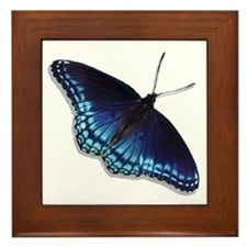 Red Spotted Purple Butterfly Framed Tile