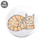 OrangeTabby ASL Kitty 3.5