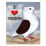 Red Turbit Pigeon Small Poster