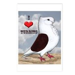 Red Turbit Pigeon Postcards (Package of 8)