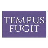 Tempus Fugit Rectangle Decal
