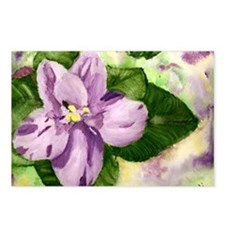 African Violet Postcards (Package of 8)