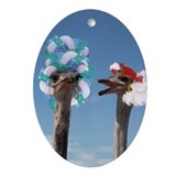 Funny Feathers Oval Ornament