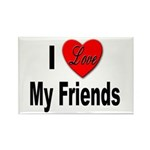 I Love My Friends Rectangle Magnet (10 pack)