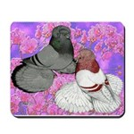 Trumpeter Pigeons and Flowers Mousepad