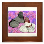 Trumpeter Pigeons and Flowers Framed Tile