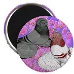"""Trumpeter Pigeons and Flowers 2.25"""" Magnet (1"""