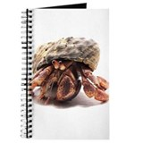 Hermit Crab Posing Journal