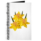 Three Jonquils Journal