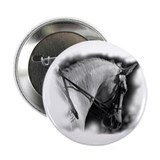 "Dressage horse 2.25"" Button (10 pack)"